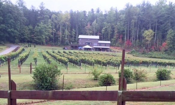 wineryvineyards
